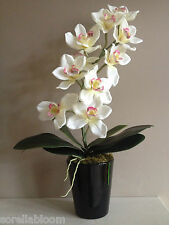 STUNNING ARTIFICIAL CREAM SILK ORCHID PLANT ARRANGEMENT WITH LEAVES IN BLACK POT