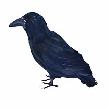 Feathered Life Size Crow/Raven Halloween Horror Prop