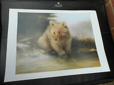 JOEL KIRK LARGE LIMITED EDITION PRINT GOLDEN GRIZZILY BEAR VGC LOW POST