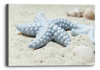 Beached Starfish Blue Yellow Sandy Canvas Wall Art Picture Home Decor