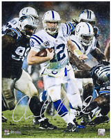 "ANDREW LUCK Hand Signed 16 x 20 ""Downpour"" Photograph PANINI LE 25"