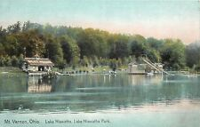 Mt Vernon Ohio~Lake Hiawatha Park~Boat House~Tall Water Slides~ 1910 Postcard
