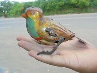 Vintage Vent dessus Litho Multicolore Oiseau Boite Jouet, Allemagne
