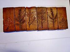 lot de 6 anciennes briques-carreaux-tommettes terre cuite-pour frises terracotta