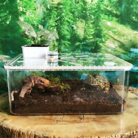 Small LED Reptile Plastic Tank Live Insect Transport Breeding Box Feeding Case