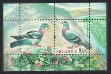 Moldova Dove Birds MS issue 2010 MNH MI#Block 50
