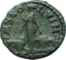 GORDIAN III 242AD Viminacium BULL & LION LEGIONS Ancient Roman Coin i66145