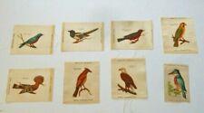 8 Zira Cigarette Tobacco Bird Silks: Blue Bird, Hoopoe, Magpie, American Eagle +
