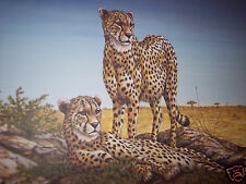 """""""Vantage Point-Cheetahs"""" by Christine Marshall Limited Ed ARP Lithograph #10/25"""