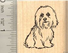 Coton de Tulear dog Rubber Stamp E10409 WM