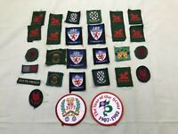 28 x Vintage Boy Scouts Badges