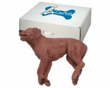 Casper CPR Training Manikin Dog - NEW ref 5000EX
