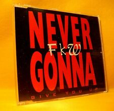 MAXI Single CD FKW Never Gonna Give You Up 5TR 1993 house eurodance