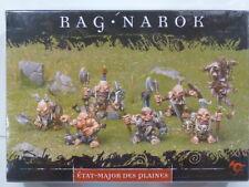 Rackham Confrontation TIR-NA-BOR DWARVES WAR STAFF OF THE PLAINS Box Hordes WHFB