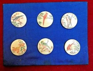 Amazing Antique Buttons Hand Painted Birds On Cream Colored Background Exquisite