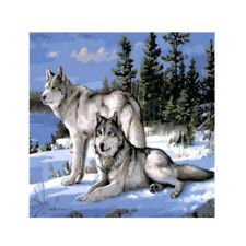 Snow Wolf Twins Digital Diamond Painting On Canvas Paint By Number DIY Kit