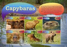 Guyana 2015 MNH Capybaras 6v M/S Rodents Wild Animals Stamps