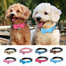 Small Dog Collar Bow Tie Leather Padded for Pet Puppy Cat Chihuahua Yorkie XS-M