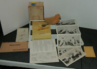VINTAGE Dick Sawdo Herring SEA GULL WOOD DECOY FOLK ART 1981