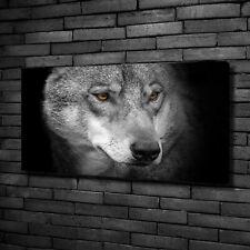 Glas-Bild Wandbilder Druck auf Glas 100x50 Deko Tiere Wolfsrudel