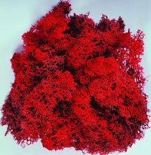 Red Reindeer Moss preserved for lining craft flower hanging basket decoration