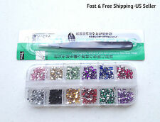 3000 12-Color 2mm Rhinestones & 1 Nippers Tweezers Nail Art Decoration Tool Kit
