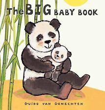 The Big Baby Book (Big Board Books)
