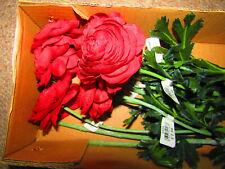 Silk Red Ranunucus Flowers x 12 in Box - Brand New In Box