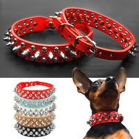 Collier à clous et pointes en cuir PU pour  Petit chien Réglable Chihuahua XXS-L