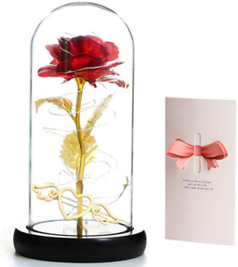 Beauty and The Beast Rose -24K Red Rose in Glass Dome with Fairy String Light, F