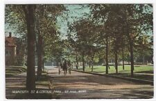 Minnesota Street & Park St Paul MN 1907 postcard