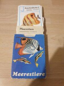antikes Kartenspiel Verlag für Lehrmittel Pössneck , Meerestiere , DDR