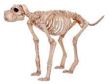Bruiser Bonez Large Skeleton Dog Halloween Prop Decoration NEW