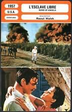 L'ESCLAVE LIBRE - Gable,De Carlo,Poitier,Walsh (Fiche Cinéma)1957 Band Of Angels