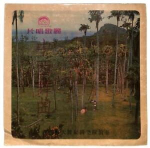 Taiwan Rare Michael May Band Dancing Music 怀念我在静静等你 LP Chinese Jungle Tree LP039