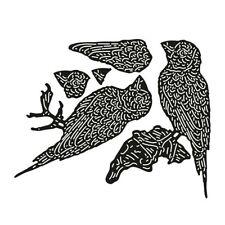 Paper and Wood Gouldian Finch Die