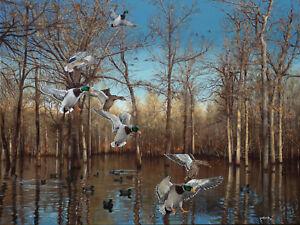 2014 Arkansas Ducks Unlimited Sponsor Print Signed Artist Proof Reydell Hole