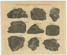 Antique Print of Coal and Bitumen (1769)