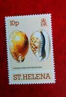 1981 QE11 ST.HELENA POSTAGE STAMP 10P clams & snails MINT HINGED