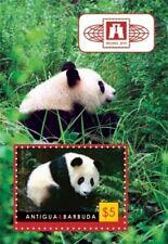 Antigua 2011 - China Expo Panda - Souvenir Sheet - MNH