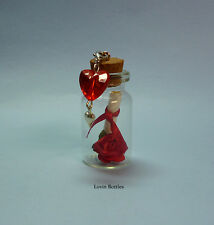 ROMANTIC VALENTINES DAY MESSAGE IN A BOTTLE GIFT