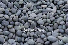 Black Mexican Beach Pebbles-decorative landscape stone ground cover