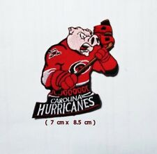 Carolina Hurricanes  NHL  Sport Logo Embroidery Patch Iron and sewing on Clothes