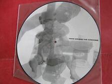 David Grubbs The Coxcomb 1999 Rectangle Picture Disc Gastr Del Sol Bastro