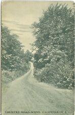 Caldwell NJ  A 1910 Country Road Scene