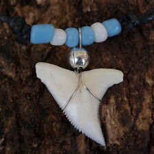 GENUINE SHARK TOOTH NECKLACE TURQUOISE WHITE GREECE ITALY JAPAN ARGENTINA CGB32