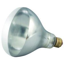 Winco Ehl-Bw, 250-Watt White Bulb for Heat Lamp Ehl-2