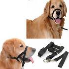 1PC Dogs Puppy Adjustable Head Halter Buckle Muzzle Headcollar Training Barking