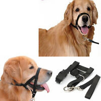 1pcs Padded Head Collar Dog Training Halter Stops Pulling Adjustable Tool w/