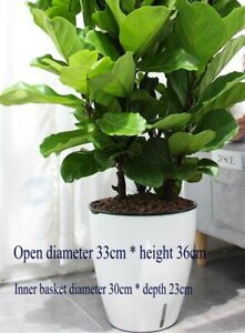 BIG Self-Watering Plastic Flower Plant Pot House Windowsill Planter Trough White